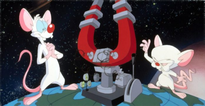 Pinky e o Cérebro: Como a intromissão da rede matou o desenho animado
