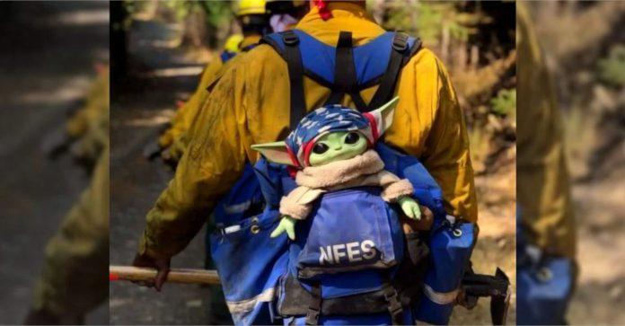 Baby Yoda está ajudando os bombeiros a combater incêndios florestais no noroeste do Pacífico