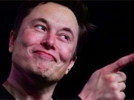 Elon Musk está ensinando um macaco a jogar videogame telepaticamente