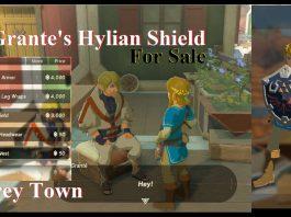 O personagem mais ÚTIL de Legend of Zelda Breath of the Wild